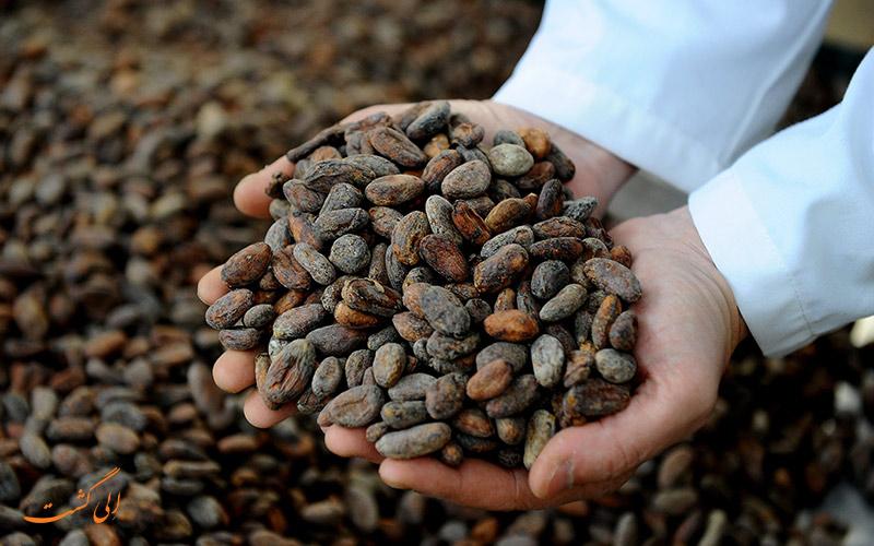 محصول قهوه اکوادور