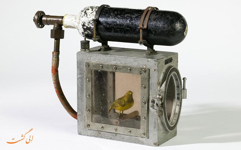 دستگاه احیا کننده قناری های عجیب