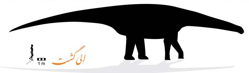سایز تخمینی دایناسور