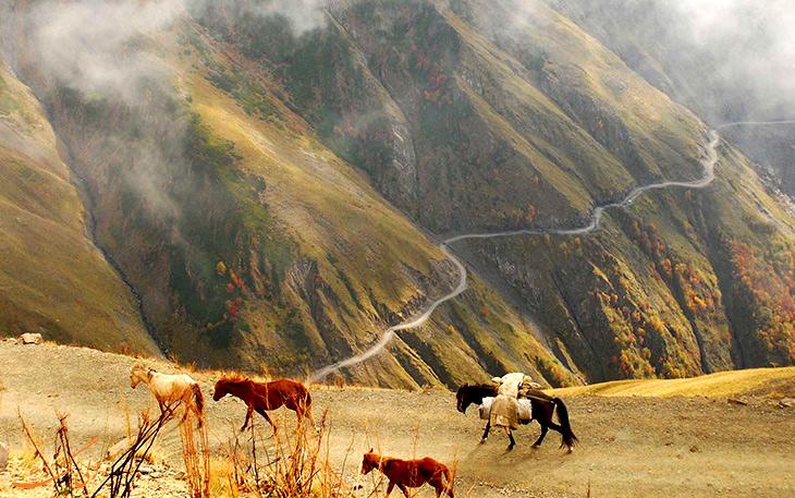 پارک ملی توشتی در تفلیس