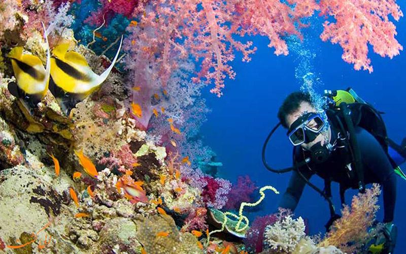 غواصی زیر آب های تایلند