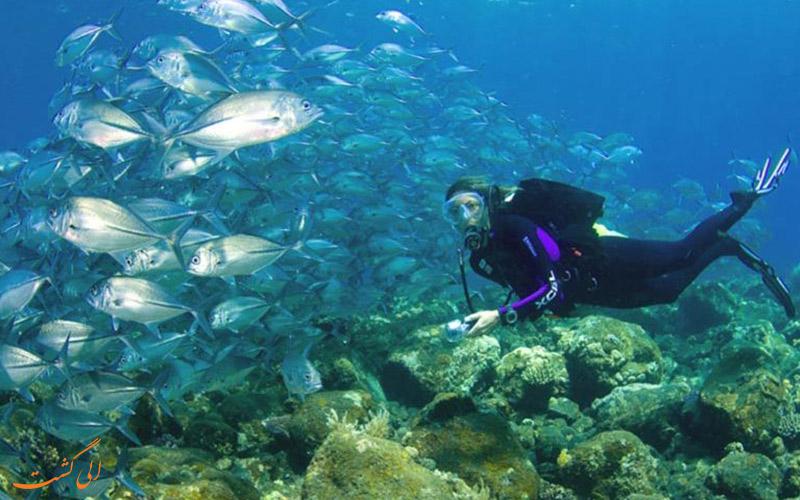 زیر آب های تایلند