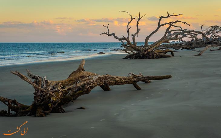 ساحل جکیل آیلند