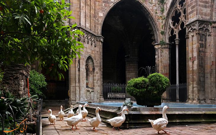 غازهای کلیسای جامع