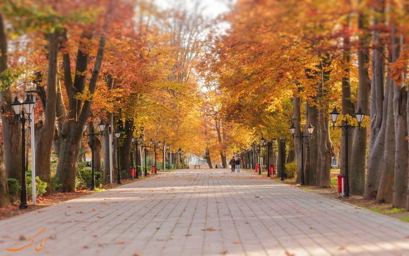 زیبایی پارک شهر