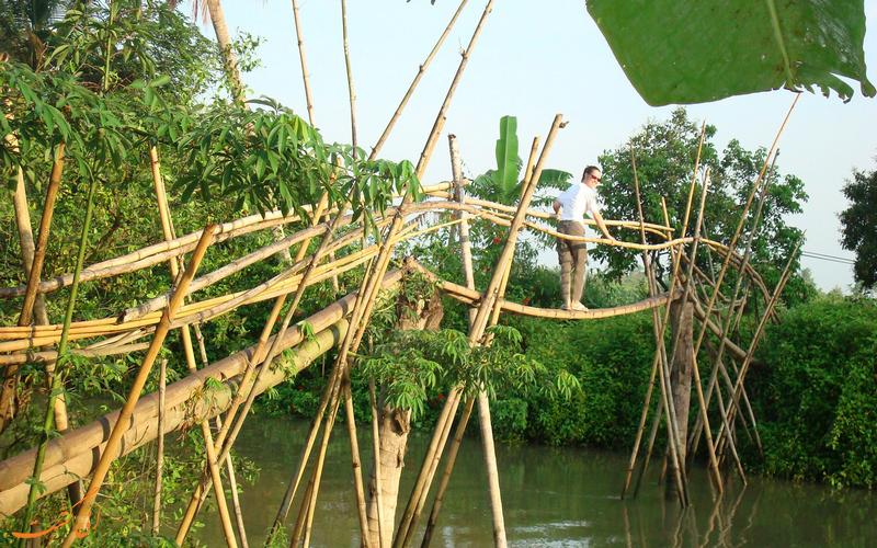 پل های میمون