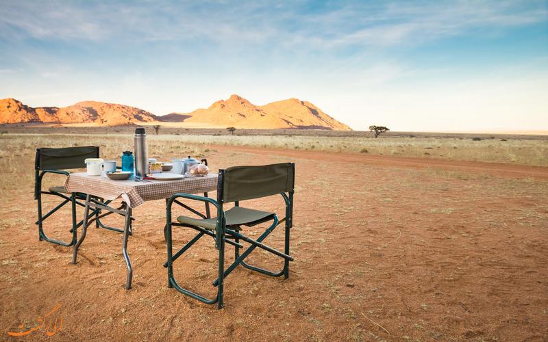 میز پیکنیک