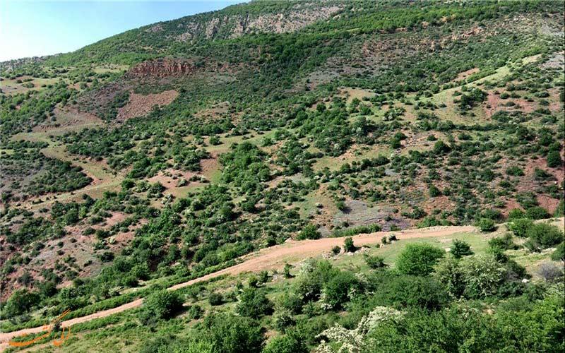 پارک-ملی-پابند-پارک های ملی ایران