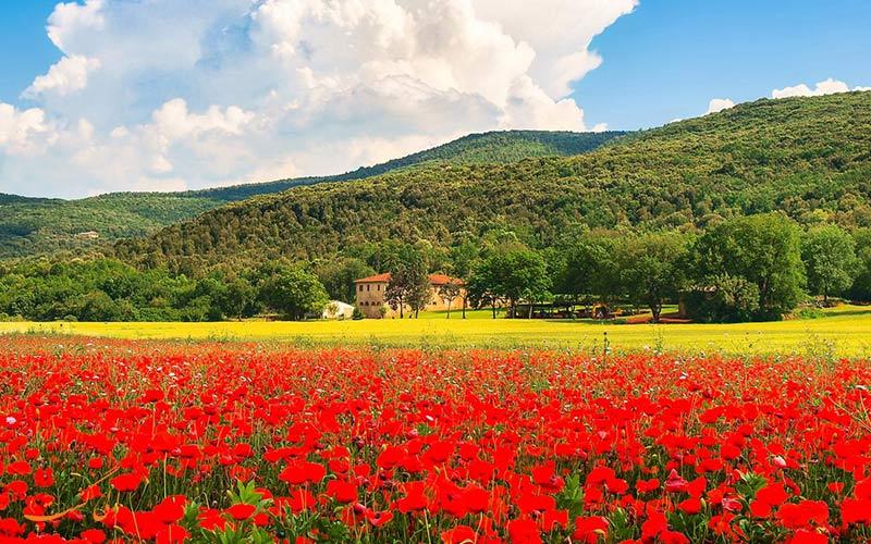طبیعت گردی در ایتالیا | توسکانی