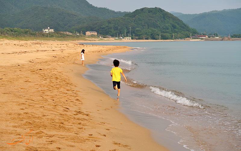 ساحل در صبح