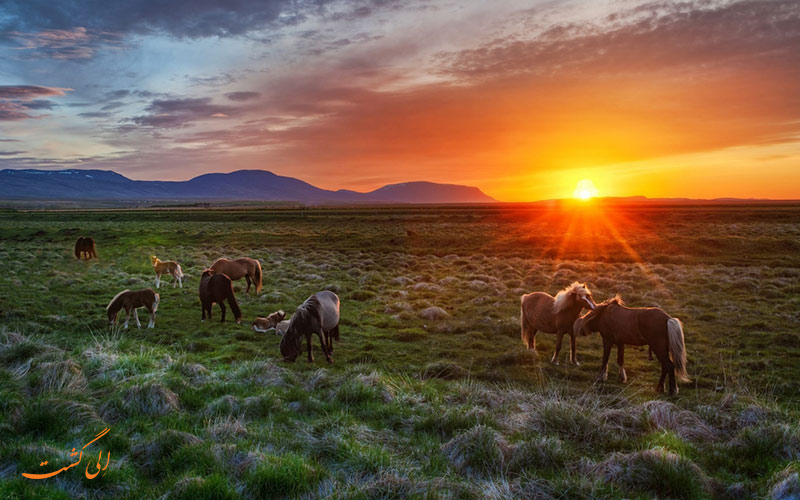 غروب ایسلند