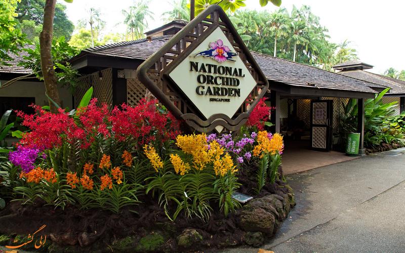 باغ ارکیده سنگاپور
