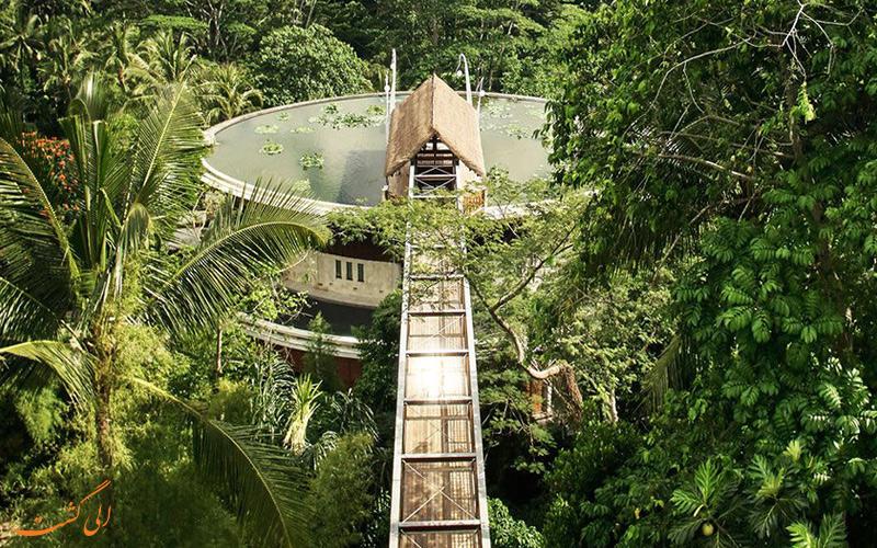 هتل اندونزی