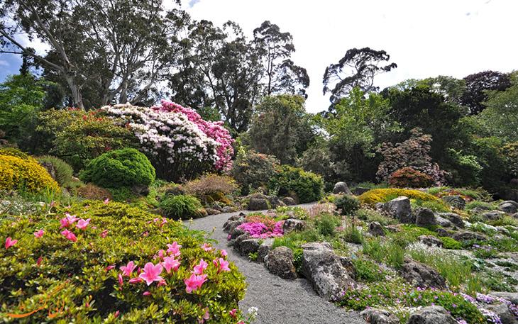 باغ های گیاهشناسی کرایست چرچ