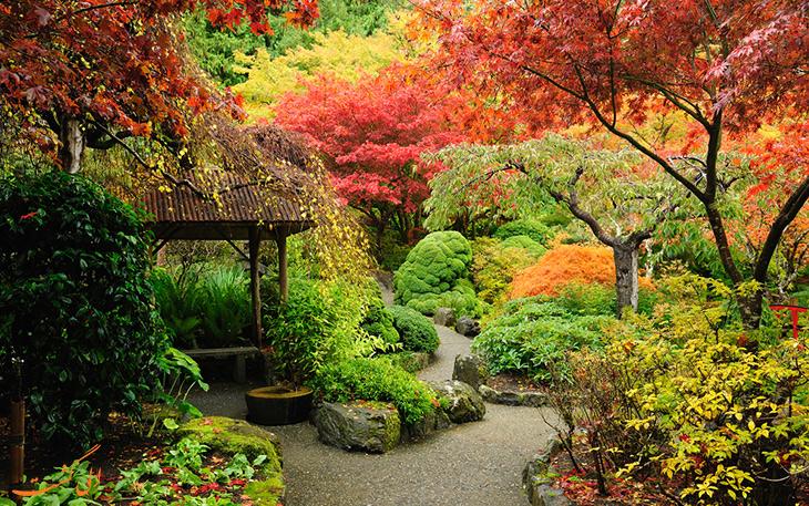 باغ های بوچارت در پاییز