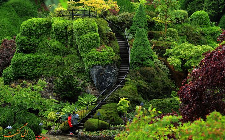بازدید از باغ های بوچارت