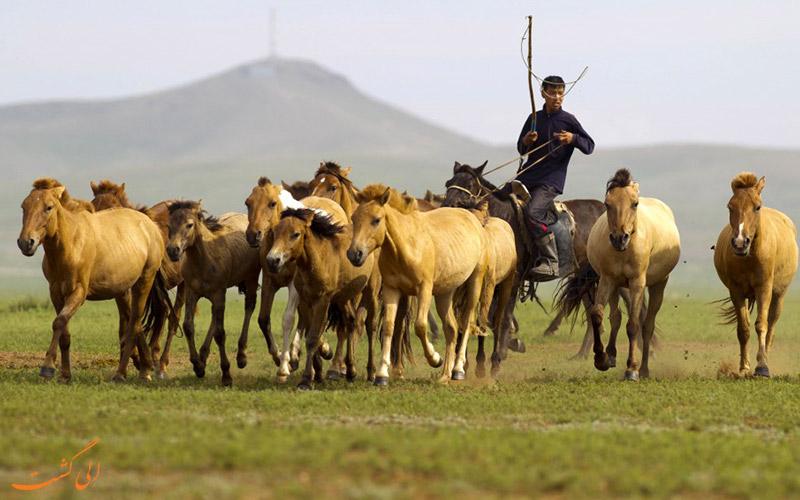 عشایر مغولستان