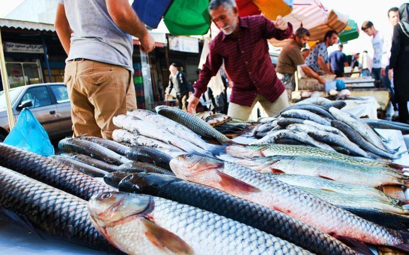 بازار ماهی فروشان در بندر انزلی