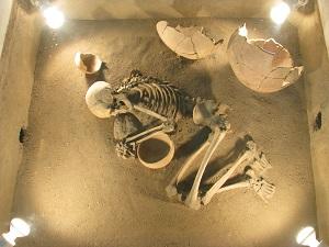 موزه هگمتانه - الی گشت