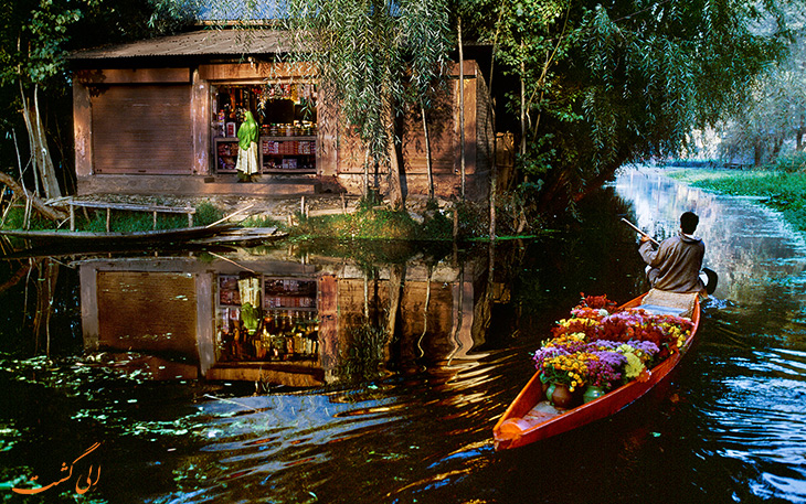 بازار گل شناور هند