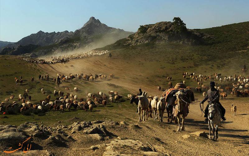 کوچ عشایر قزاق