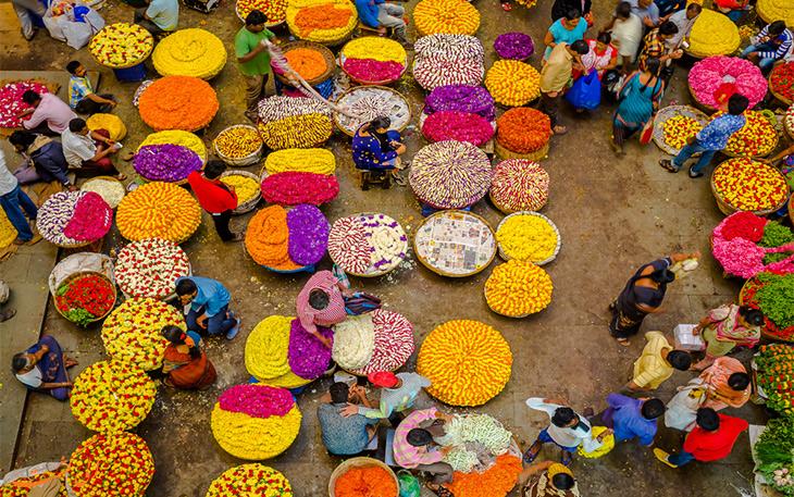 مشهورترین بازارهای گل هند