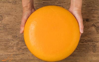تاریخچه پنیر گودا
