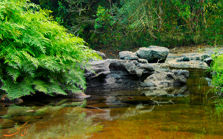 منطقه حفاظت شده در لائوس