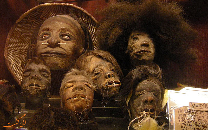 سر کوچک شده انسان- قبیله جیوارو