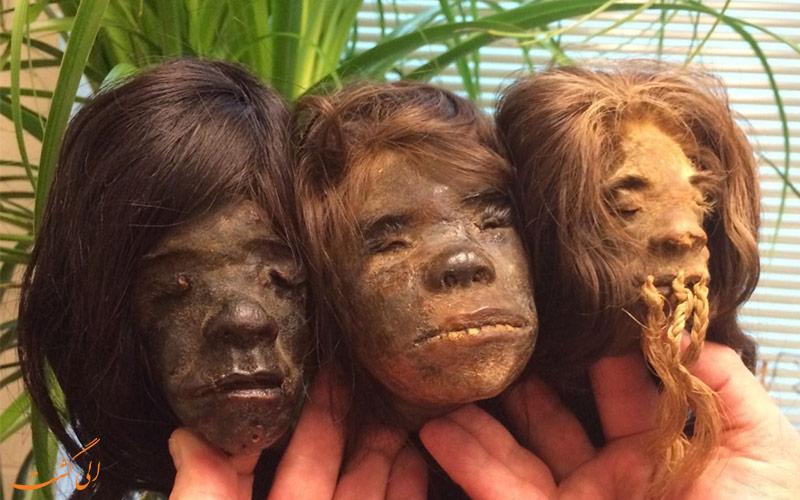 سر کوچک شده انسان ها در موزه ها