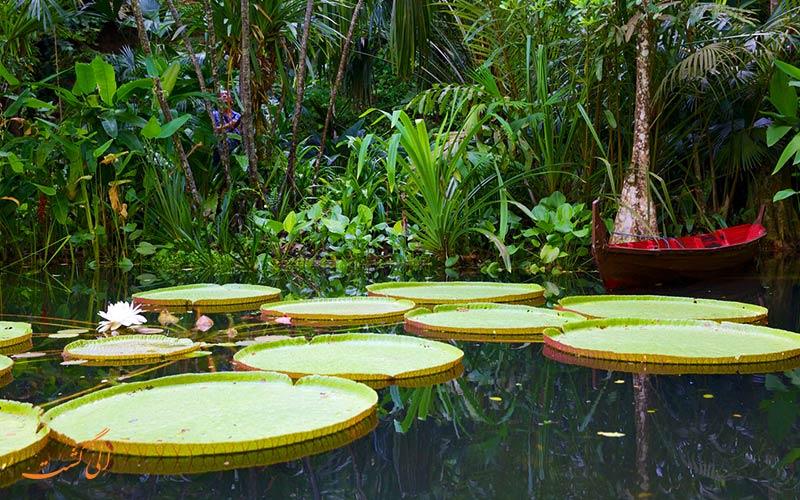 باغ ادویه های استوایی پنانگ