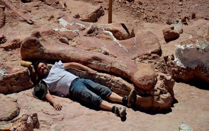 بزرگترین دایناسور جهان