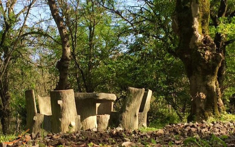 میز و صندلی های چوبی