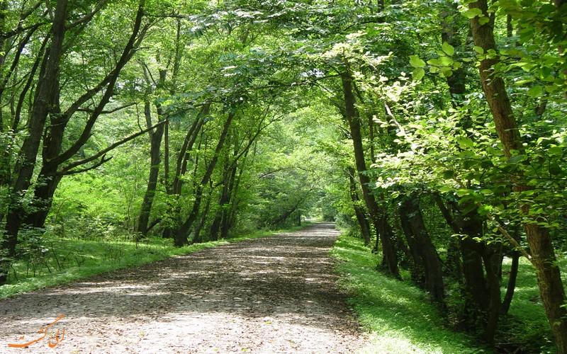 پارک جنگلی نور استان مازندران