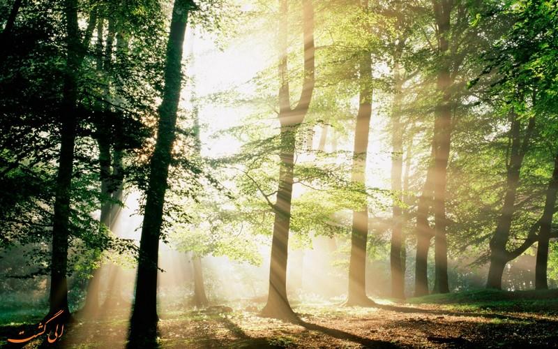 پارک جنگلی نور در استان مازندران