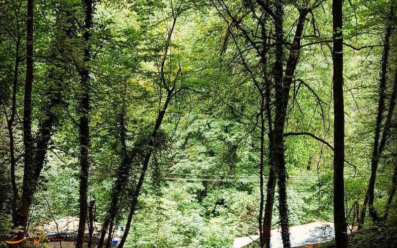طبیعت آبشار زیبای آب پری