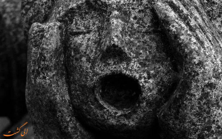 صدای جیغ در پووجلیا