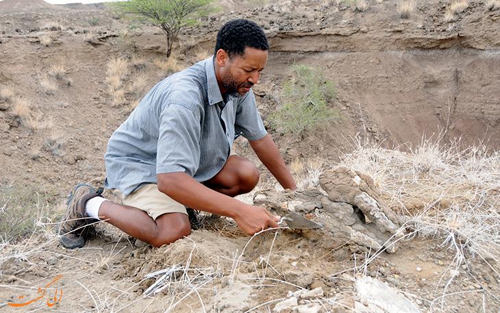 محوطه کشف فسیل در اتیوپی