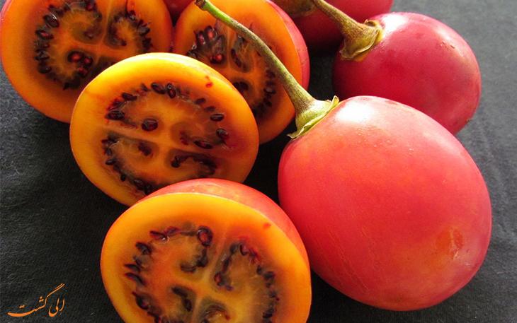 گوجه درختی