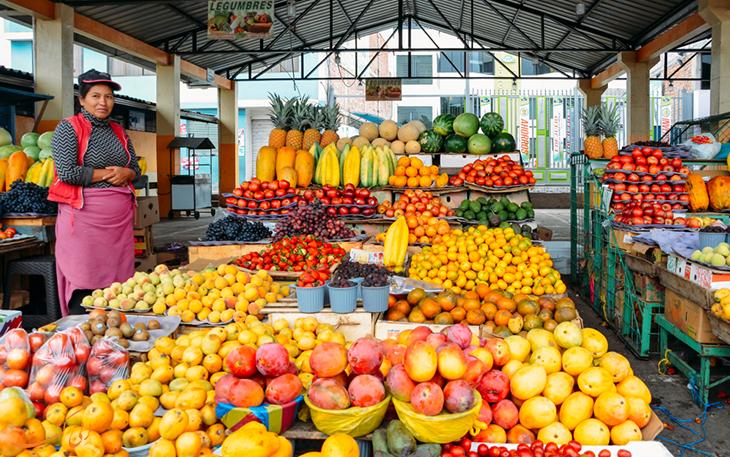 آشنایی با میوه های بومی اکوادور