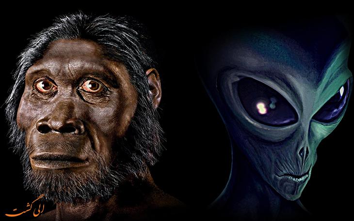 نظریه تکامل یا خلقت