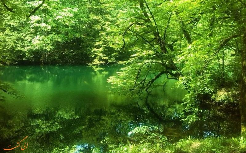 دریاچه فراخین در دل طبیعت
