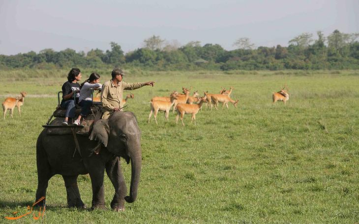 پارک های ملی هند