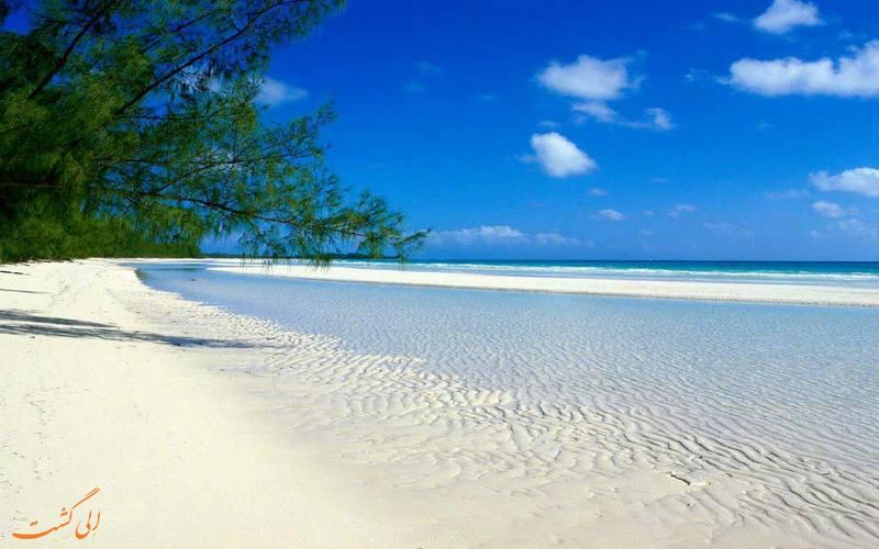 جزیره پمبا