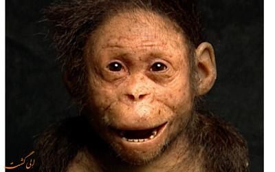 کشف فسیل دختربچه 3.3 میلیون ساله