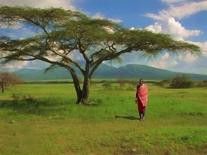 جاذبه های گردشگری تانزانیا - الی گشت