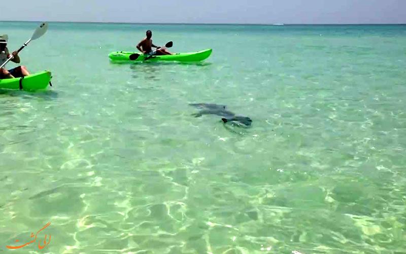 ساحل فلوریدا