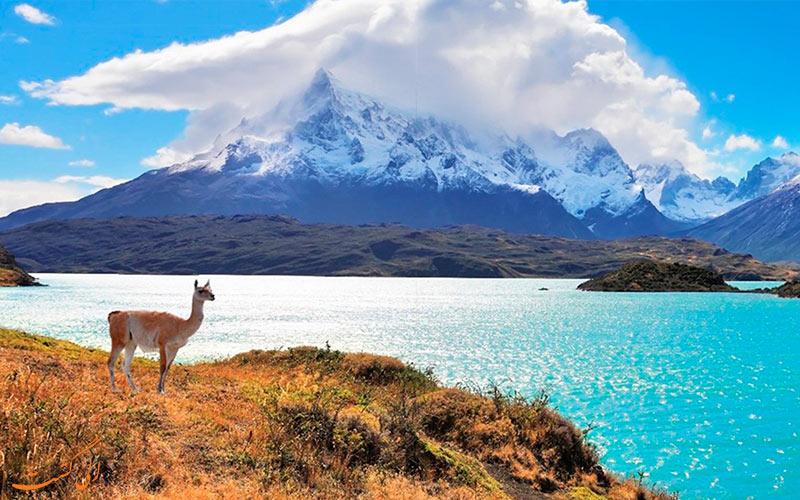 تور شیلی
