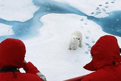 نکات سفر به قطب شمال-الی گشت