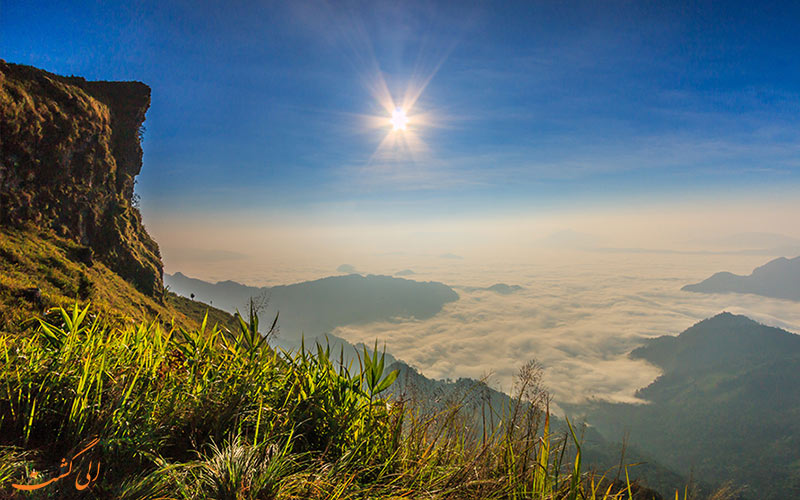 جاذبه های تایلند-پارک جنگلی